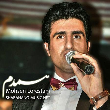محسن لرستانی - همدم