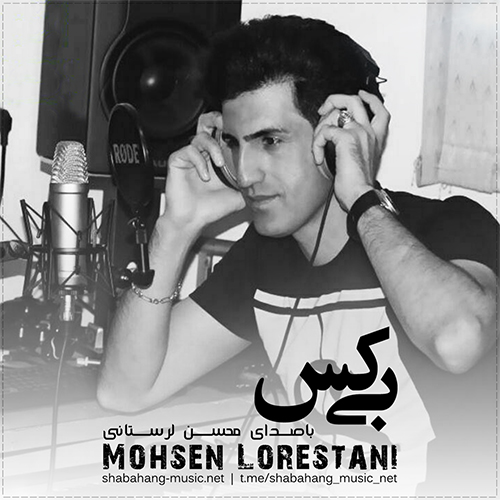 محسن لرستانی - بی کس